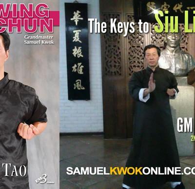 Siu Lim Tao Combo